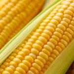ما فوائد الذرة ؟