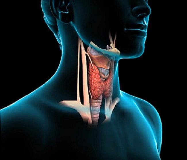 اعراض انخفاض و خمول الغدة الدرقية