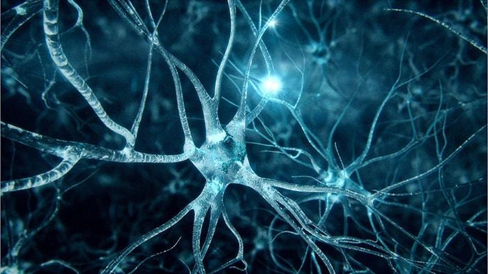 امراض الجهاز العصبي و الوقاية منها