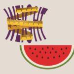 البطيخ والرجيم والاستفادة منه لتخفيض الوزن