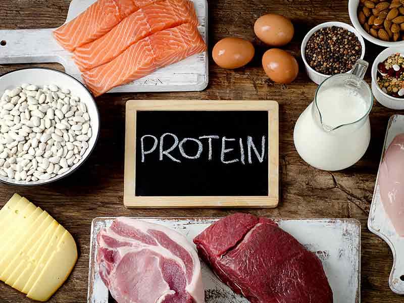 اين يوجد البروتين