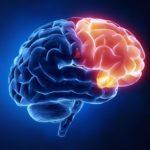 اعراض جلطة المخ
