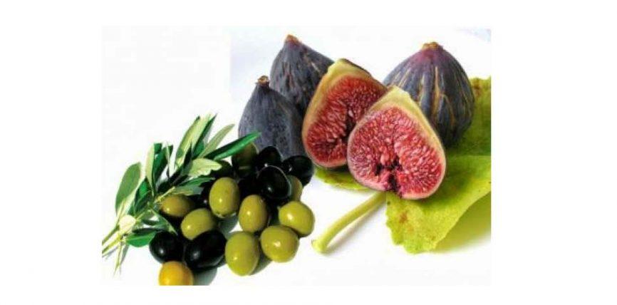 فوائد التين والزيتون