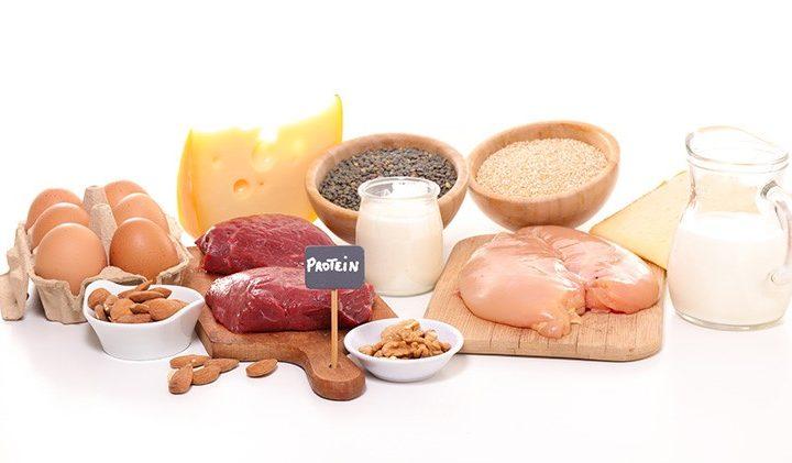 طريقة عمل البروتين للعضلات