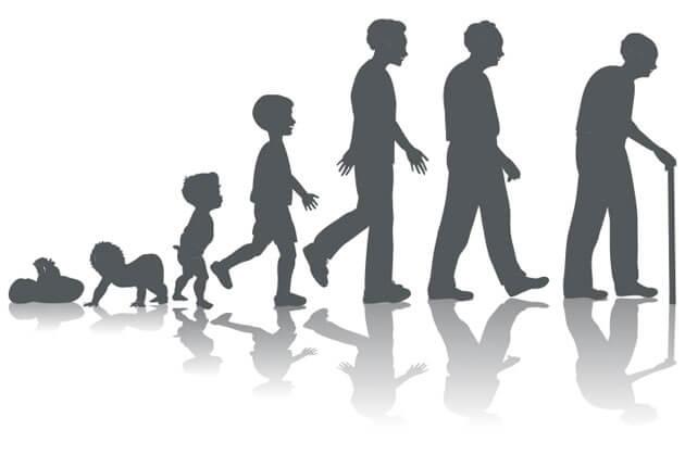مراحل نمو الانسان النفسية والجسدية