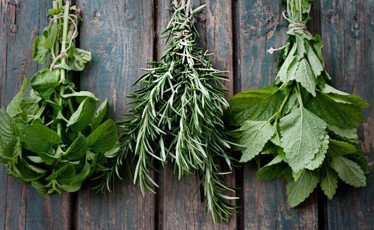 التخلص من رائحة الفم الكريهة بالاعشاب